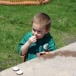 Stone update – June 30, 2010