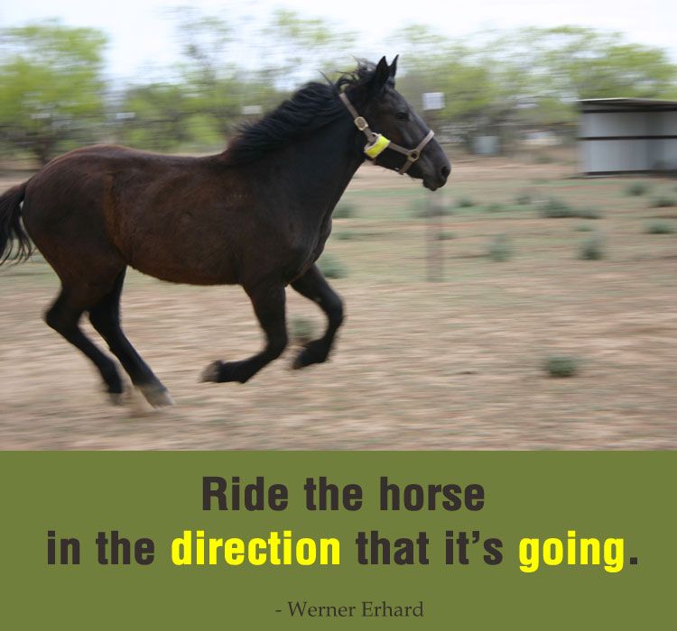 Ride the horse in the direction that it's going